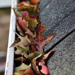 Clogged gutters filled with fall leaves  in Lawrenceburg